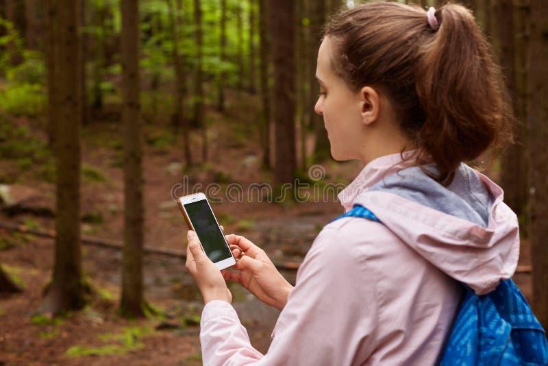 Plenerowy strzał kobiety backpacker dostaje przegranym i próbującym znajdować jej sposób w lesie, używać online mapy w telefonie  zdjęcie stock