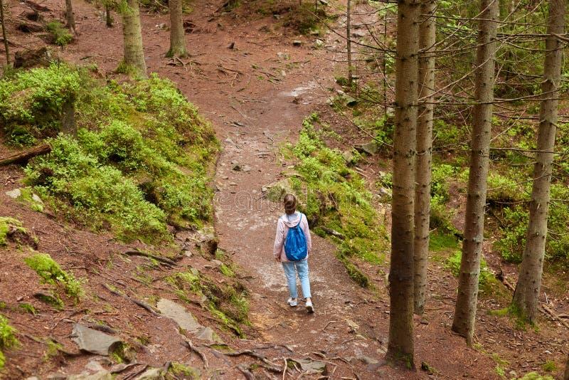 Plenerowy strzał tułacza kobieta jest ubranym błękitnego plecaka, różaną kurtkę i cajgi z ponytail, mieć spacer w lesie, wybiera  zdjęcia royalty free