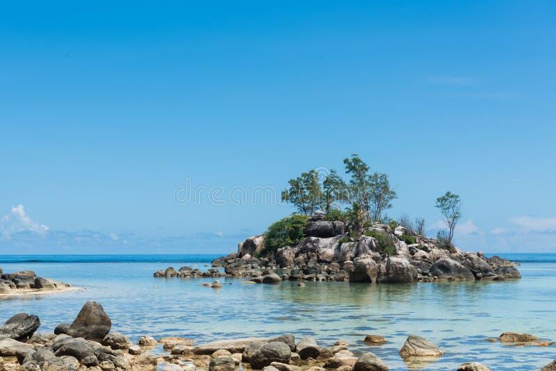 Plenty of rocks and trees at Seychelles beach stock photography