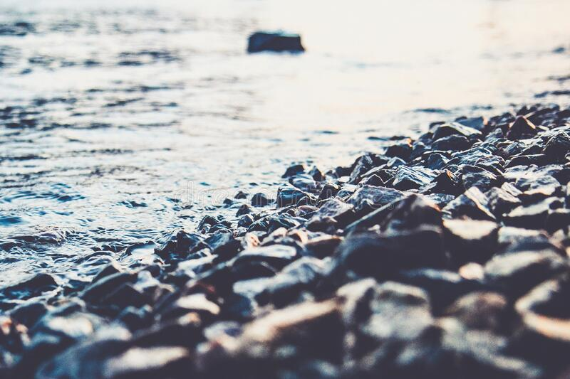 Plenty of wet pebble stones by a seashore. Closeup natural photo. Summer day. Calm, relaxing photo of a lot of rocks and water royalty free stock image