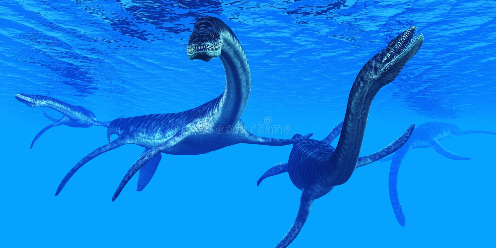 Plesiosaurus Marine Reptiles stock illustrationer
