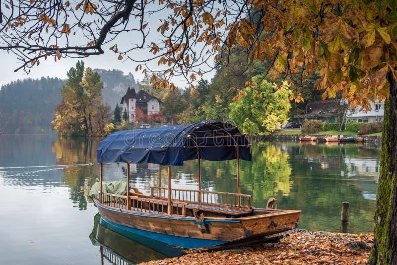 Pletna łodzie na jeziorze Krwawili Slovenia fotografia royalty free