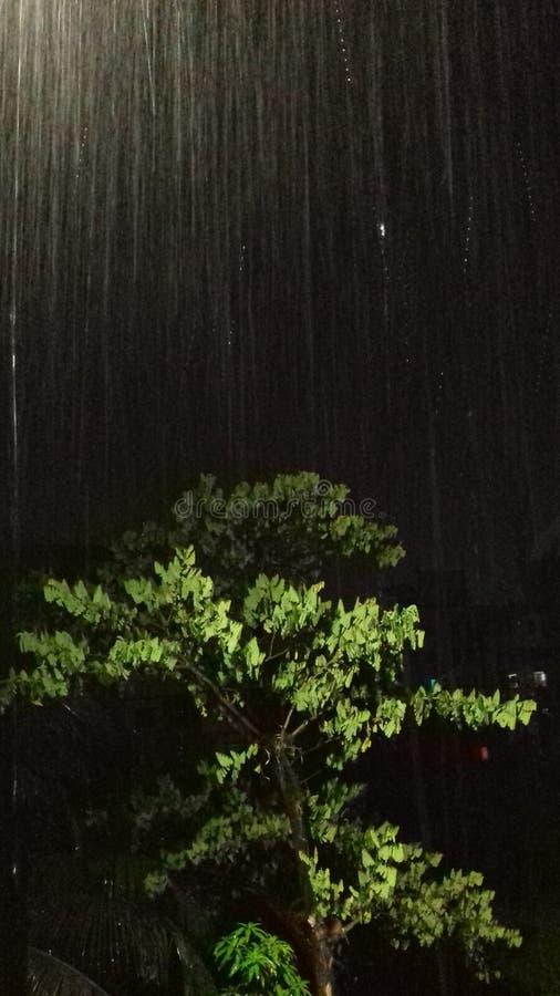 pleuvoir images libres de droits