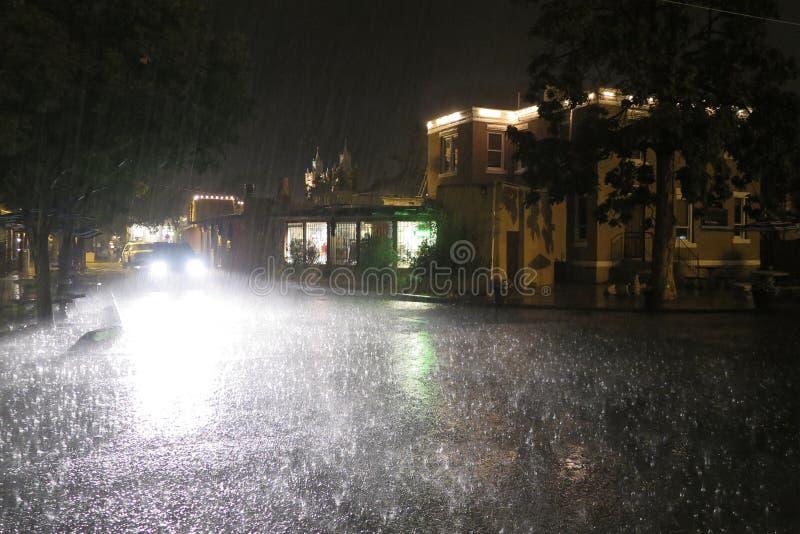 Pleuvoir des chats et des crabots photos libres de droits