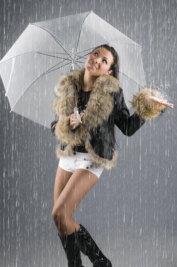 Pleuvoir des chats et des crabots photos stock