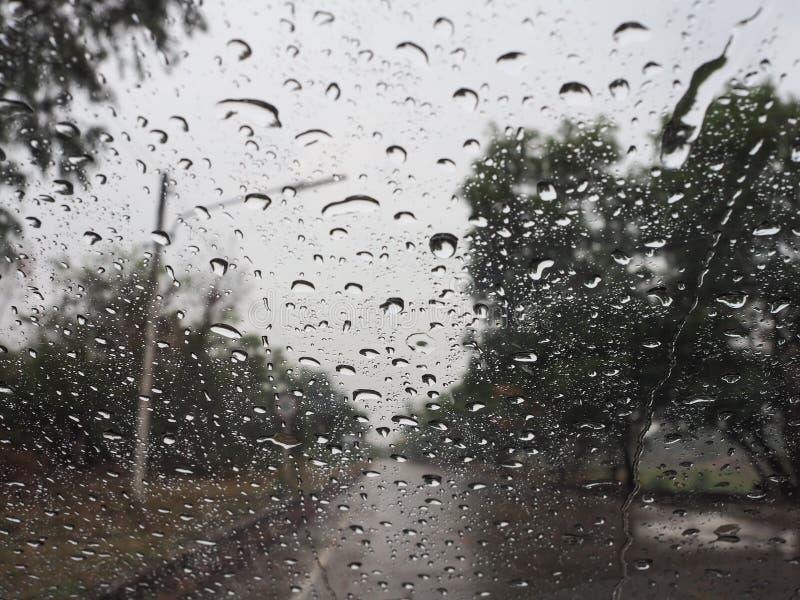 Pleuvoir les baisses photographie stock libre de droits