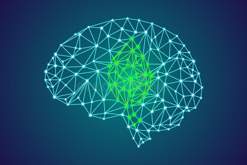 Plexus ludzki mózg z zielonym liściem royalty ilustracja