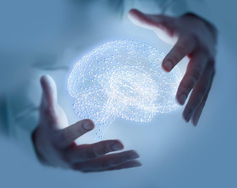 Plexusstruktur som bildas till en mänsklig hjärna royaltyfria foton