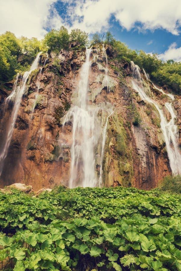 Plitvice湖国立公园、美好的风景与瀑布,湖和森林,克罗地亚 免版税库存图片
