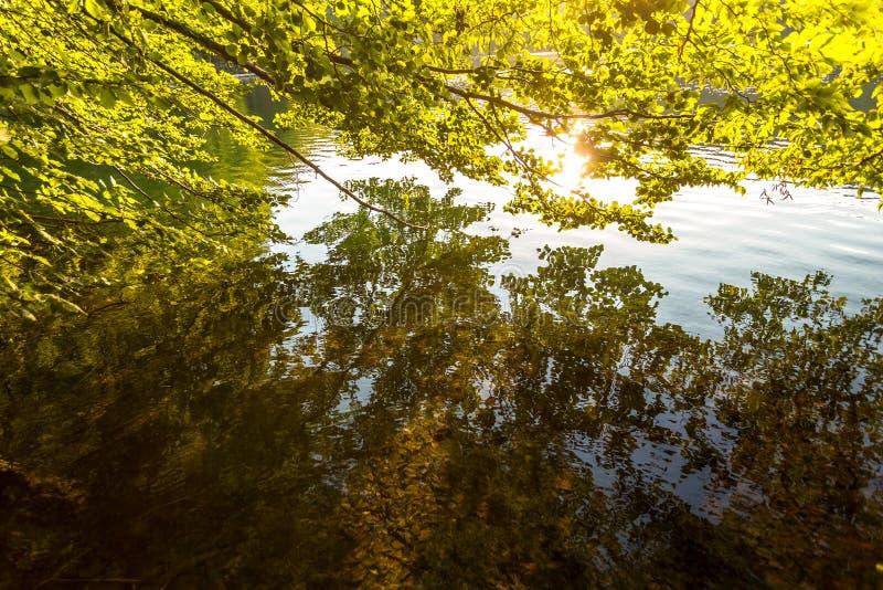 Plitvice湖,克罗地亚瀑布 惊人的地方 图库摄影