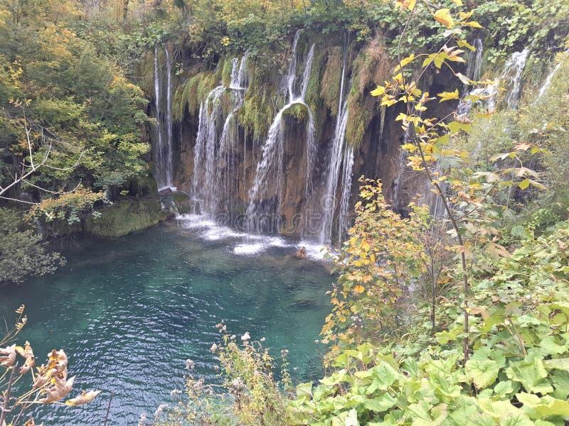 Plitvice湖,克罗地亚,小湖这是深绿,惊人的地方 免版税库存照片