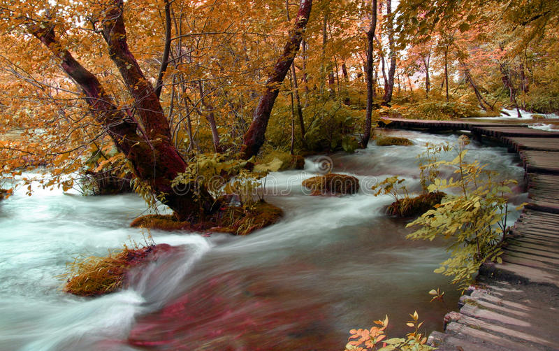 Plitvice royalty free stock image