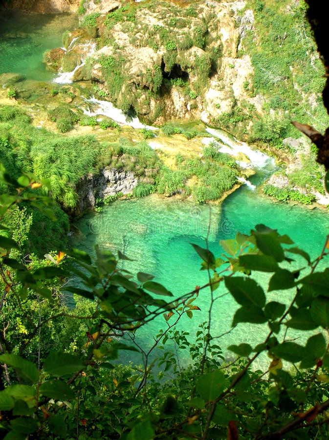 Plitvice. Emerald water in Plitvice lakes, Croatia royalty free stock images