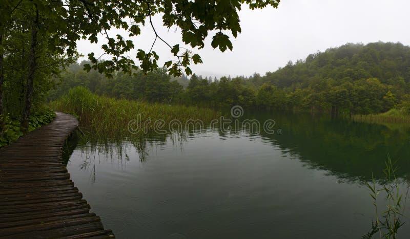 Plitvice jezior park narodowy, przejście, boardwalk, jezioro, las, zieleń, środowisko, góra, rezerwat przyrody, Chorwacja, Europa zdjęcia stock