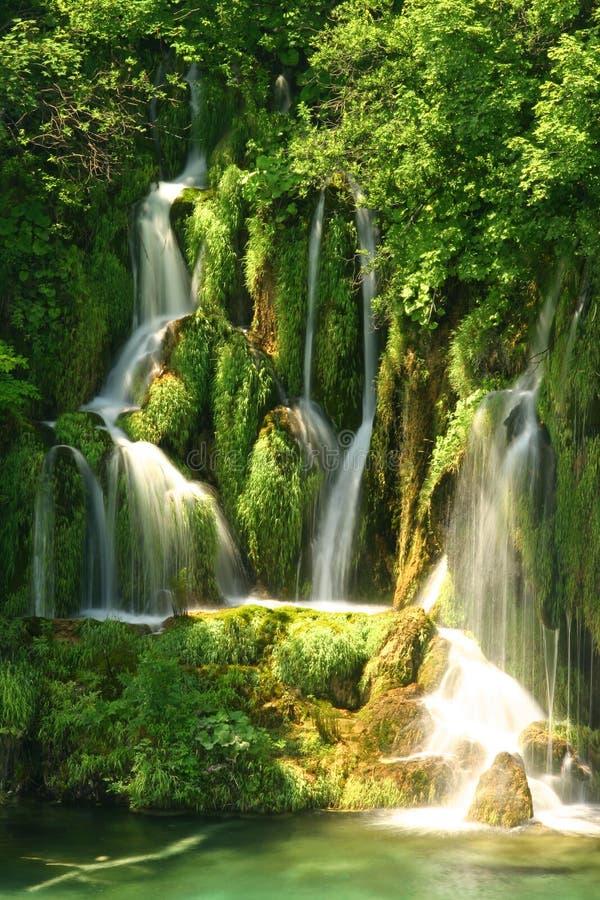 Plitvice jeziora Chorwacja - park narodowy w lecie (Hrvatska) fotografia royalty free