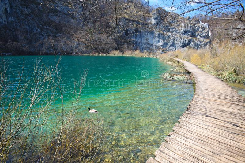 Download Plitvice lakes in croatia stock image. Image of holiday - 13816393