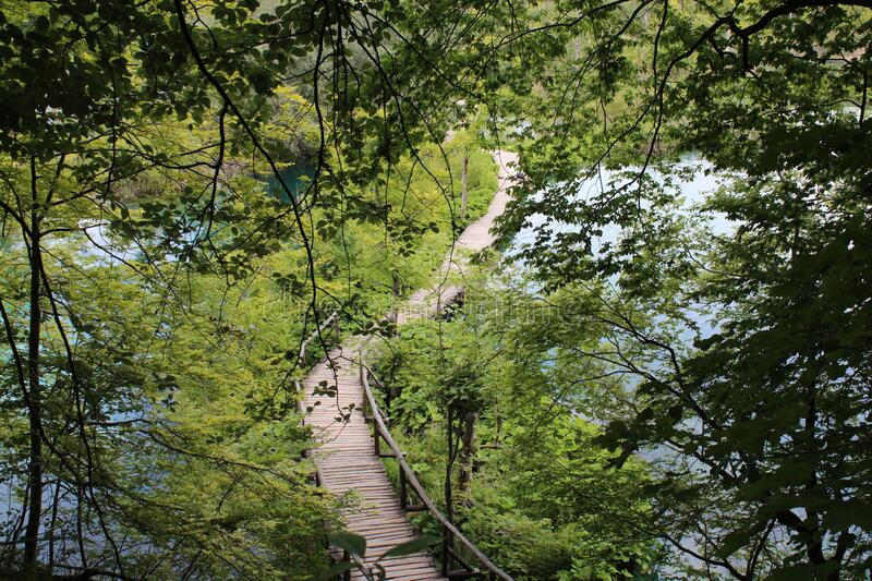 Plitvice lakes, Croatia, natural landscape royalty free stock images