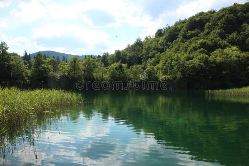 Plitvice lakes Park, Croatia, natural waterfalls and streams of water royalty free stock image