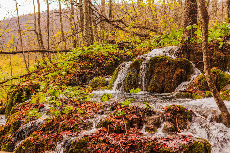 Download Plitvice lakes, Croatia stock photo. Image of plitvice - 36275110