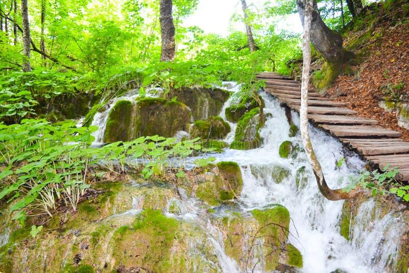 Plitvice lakes in Croatia. Waterfalls a in Plitvice lakes in Croatia - nature travel background stock image