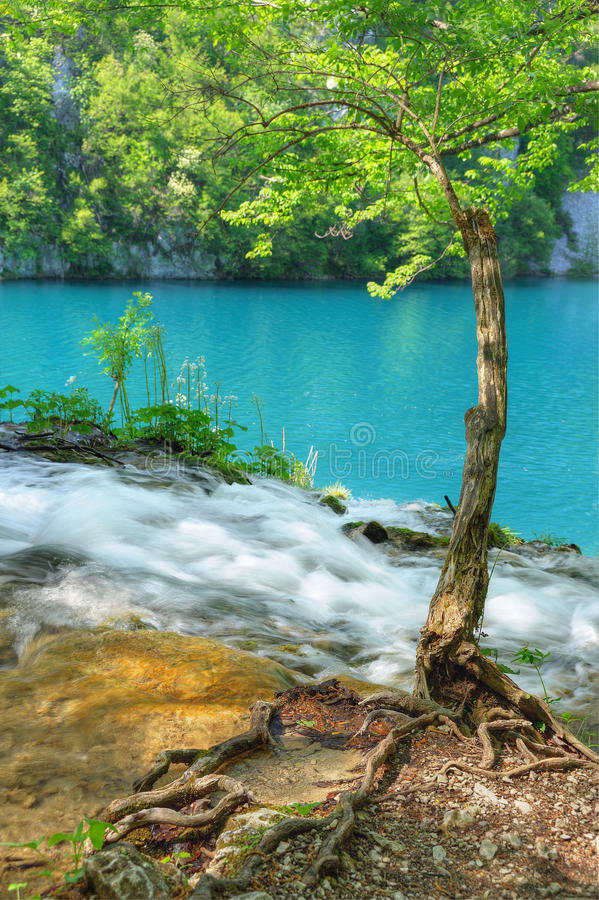 Download Plitvice Lakes National Park Stock Image - Image of cliff, green: 27594677