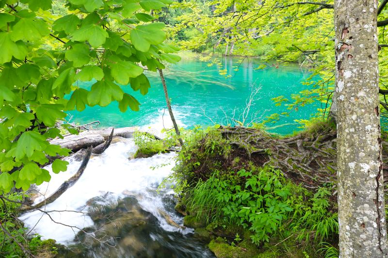Amazing Plitvice Lakes National Park, Croatia. The Plitvice Lakes National Park, Croatia's most popular tourist attraction, was granted UNESCO World stock photos