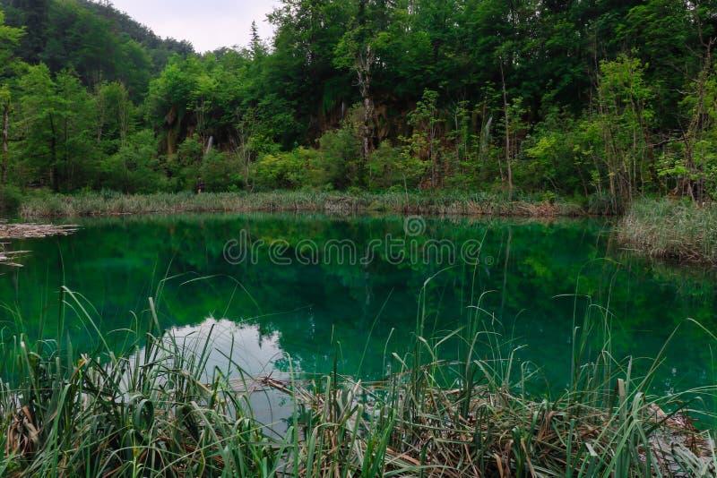 Amazing Plitvice Lakes National Park, Croatia royalty free stock images