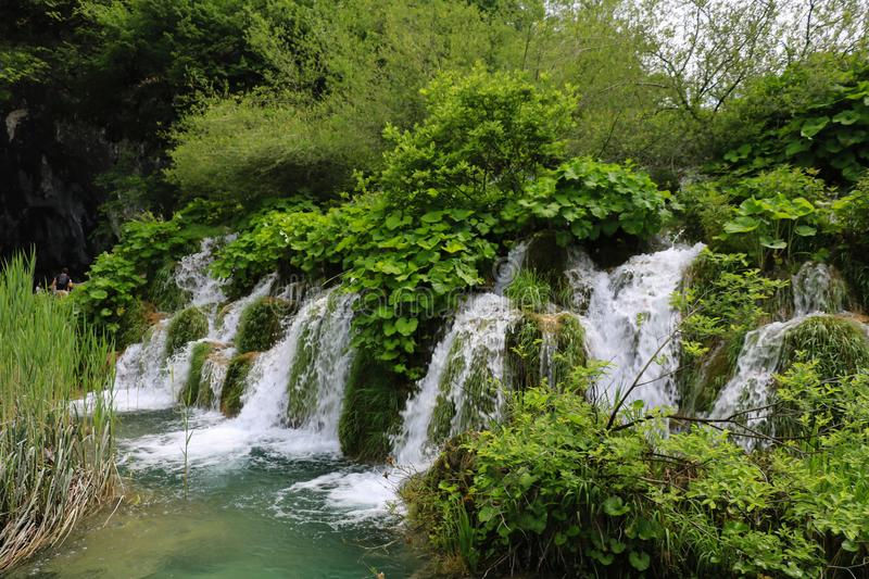 Amazing Plitvice Lakes National Park, Croatia. The Plitvice Lakes National Park, Croatia's most popular tourist attraction, was granted UNESCO World royalty free stock photos