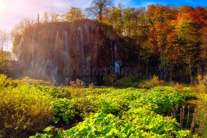 Plitvice lakes Plitvicka jezera national park, Croatia. Amazing autumn sunny landscape. With waterfall, colored trees and blue sky, Prstavac. Outdoor travel royalty free stock photo