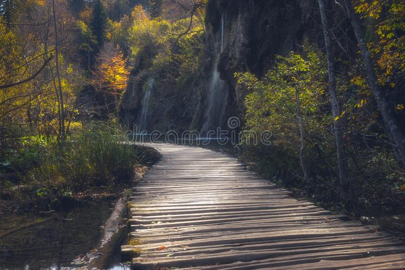 Plitvice lakes Plitvicka jezera national park, Croatia. Amazing autumn sunny landscape. With tourist route on the wooden flooring through a forest and waterfall royalty free stock images