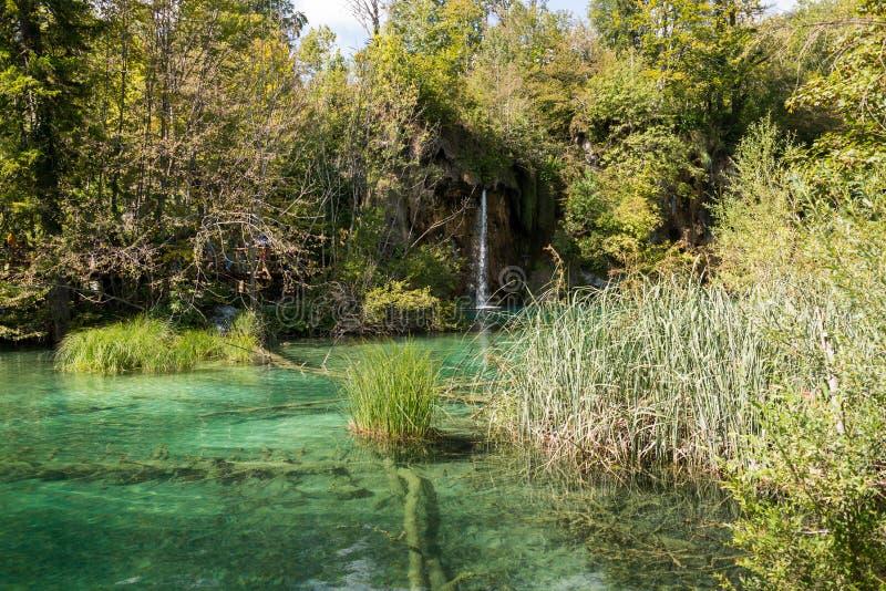 Plitvice See-Nationalpark in Kroatien stockfotografie