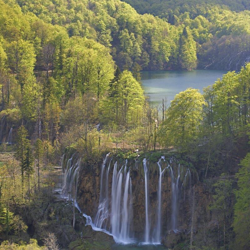 Plitvice sjöar av Kroatien - nationalpark i vår arkivbild