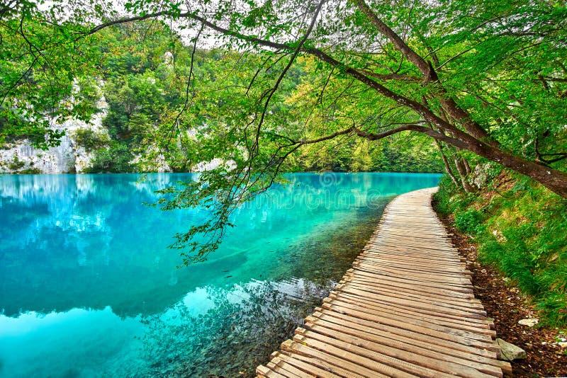 Plitvicemeer Kroatië stock afbeelding