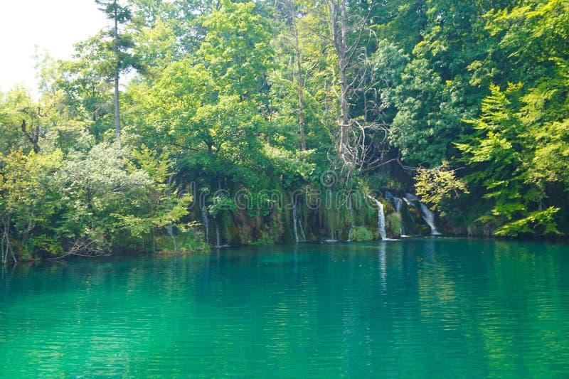 Plitvicemeren Nationaal park-Kroatië Vijver en in de kleine watervallen als achtergrond royalty-vrije stock fotografie