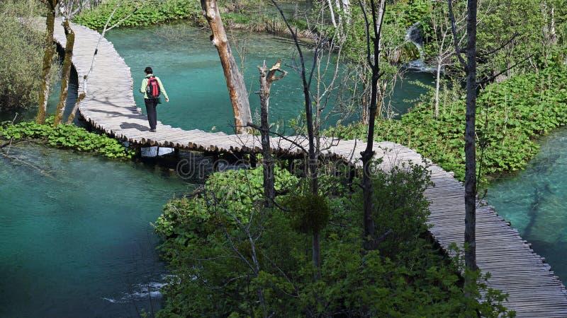 Plitvicemeren (Plitvicka-jezera), Kroatië royalty-vrije stock foto's