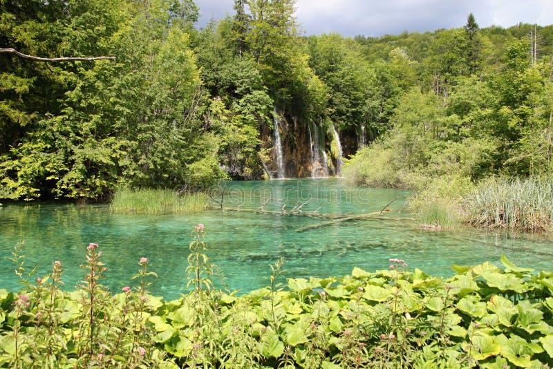 Plitvicka lakesl arkivfoton