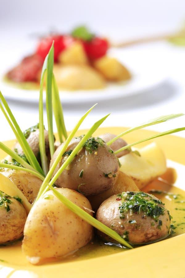 plocka svamp potatisar royaltyfria bilder