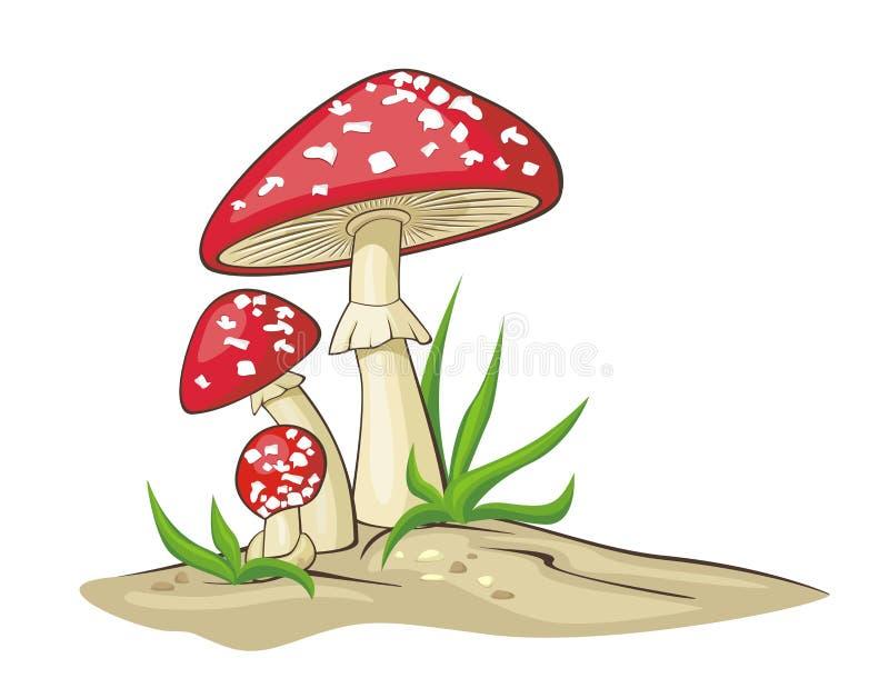 plocka svamp red royaltyfri illustrationer