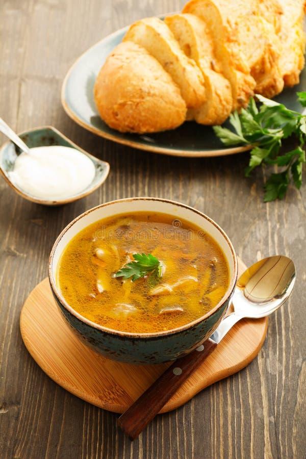 plocka svamp soup arkivbild