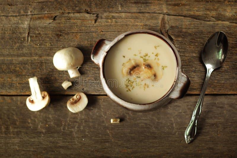 plocka svamp soup royaltyfria foton