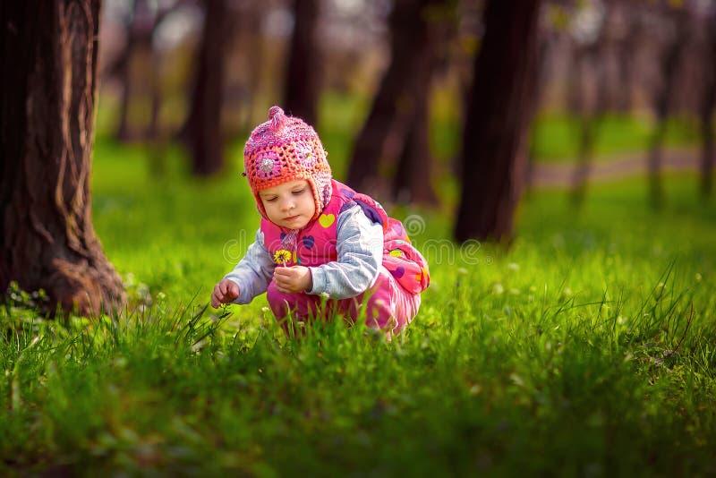 Plockning för det lilla barnet blommar på gatan royaltyfria bilder