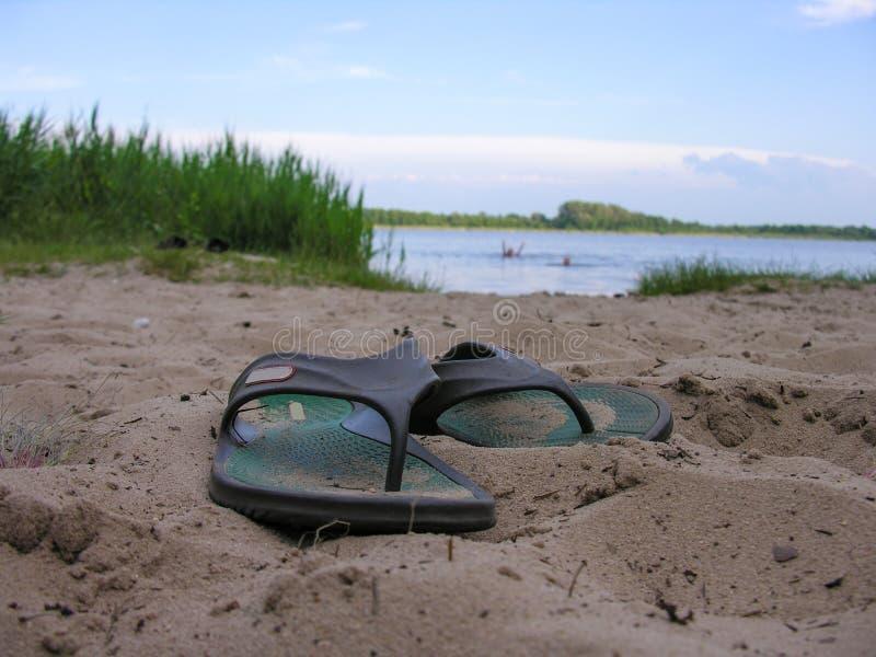 Ploffen verlaten zwemmer op de zandige kust royalty-vrije stock afbeeldingen