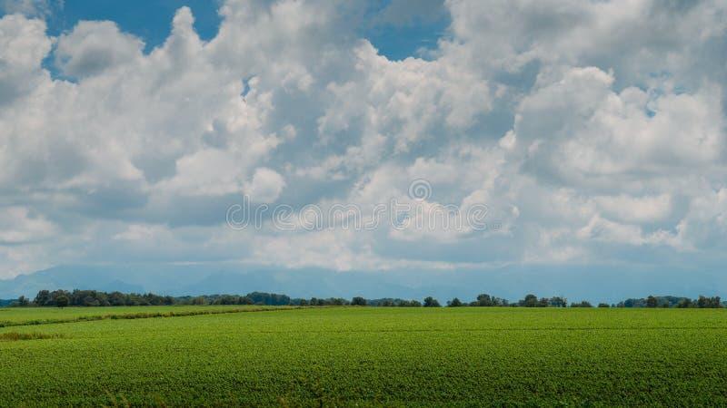 Plogade fält nära i sydvästliga Frankrike royaltyfria foton