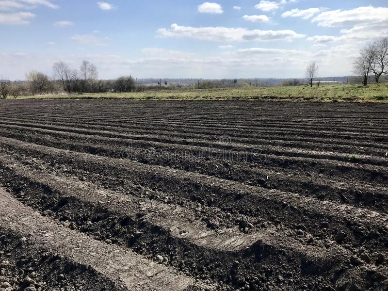 Plogat fält för potatis i brun jord på den öppna bygdnaturen fotografering för bildbyråer