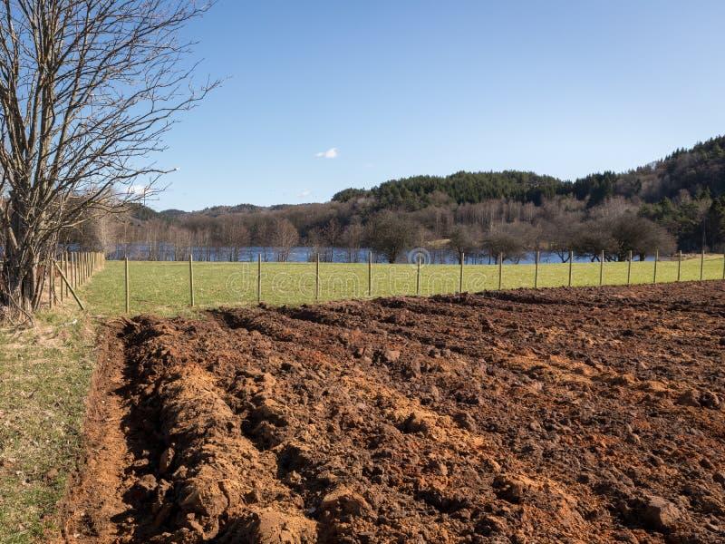 Plogat fält i vårtid, grönt gräs på sidorna, blå himmel royaltyfri fotografi