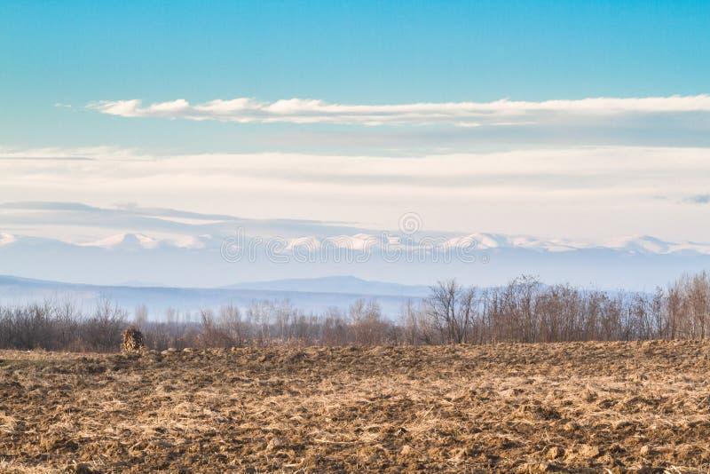 Plogat fält i vintereftermiddag royaltyfri bild