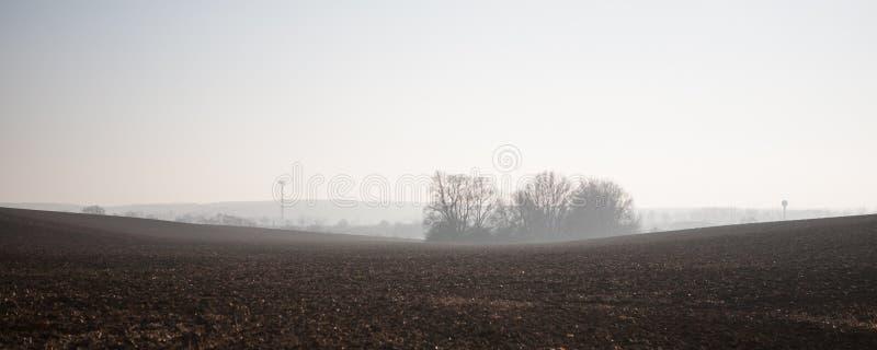 Plogat fält på den dimmiga morgonen arkivfoto