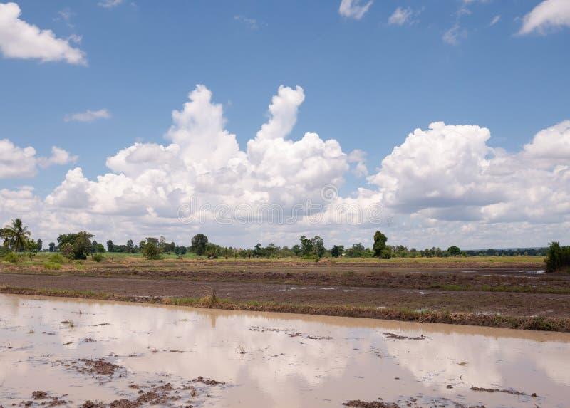 Plogat fält som är klart för att plantera och blå himmel arkivfoto