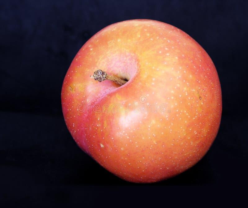 Download Plomb photo stock. Image du piqûre, plomb, sain, fruit, rond - 80136