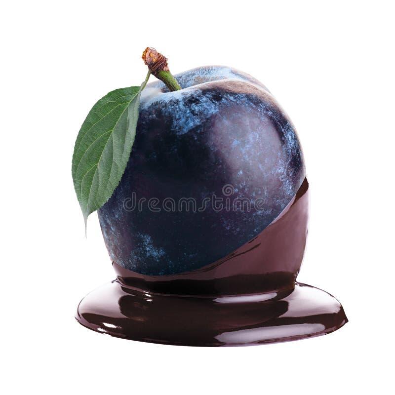 Plommon i varm choklad fotografering för bildbyråer
